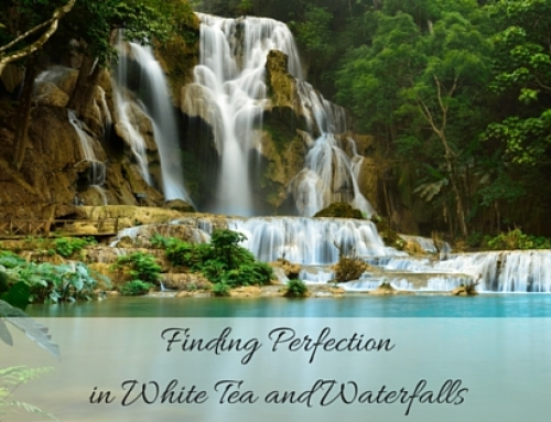 Finding Perfection in White Tea and Waterfalls
