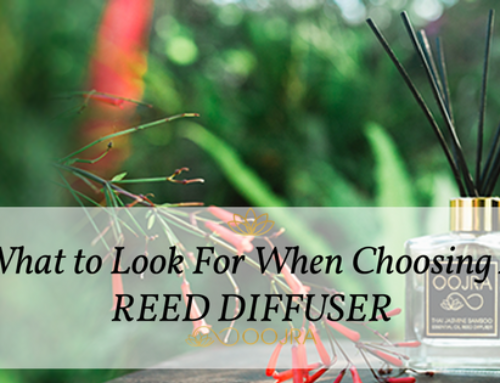 Reed Diffusers: How To Choose The Right One