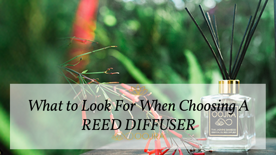 How To Choose A Reed Diffuser