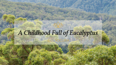 A Childhood Full of Australian Eucalyptus
